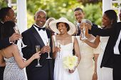 image of wedding couple  - Wedding guests toasting bride and groom - JPG