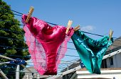 image of brothel  - Saucy silk and lace panties on a respectable suburban washing line hinting at lesbianism - JPG