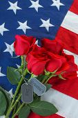 American flag with roses and military dog tags with text - Veterans Day poster