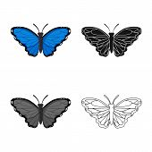 Isolated Object Of Butterfly And Creature Sign. Collection Of Butterfly And Wildlife Stock Symbol Fo poster