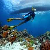 picture of biodiversity  - Underwater shoot of a young lady snorkeling and diving on a breath hold over vivid coral reef of tropical island with boat silhouette on surface - JPG