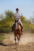Image of female jockey with purebred horse poster