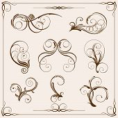 picture of floral design  - Vector floral design elements on light - JPG