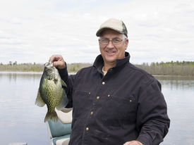 stock photo of crappie  - Fisherman witha large Black Crappie in Minnesota - JPG