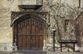 stock photo of english ivy  - A picture of ornamental historical gate and a fragment of wall covered with ivy in Magdalen street oxford university - JPG