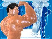 Body Building Bg004 poster