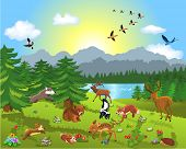 picture of skunk  - wild animals in the meadow - JPG
