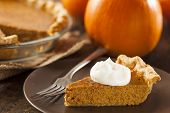 pic of pumpkin pie  - Homemade Delicious Pumpkin Pie made for Thanksgiving