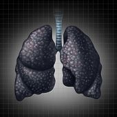 stock photo of respiratory disease  - Human lung disease health care concept as a decline in respiratory function caused by cancer or disease as black lung as a damaged organ slowly losing function - JPG