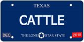stock photo of texas star  - A fake imitation Texas License Plate with the word CATTLE and The Lone Star State making a great concept - JPG