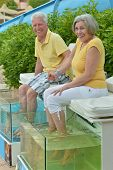 stock photo of fish skin  - Senior couple at fish spa skin treatment - JPG