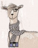 pic of lamas  - Cute hipster lama with photo camera glasses and scarf - JPG
