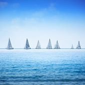 picture of sailing vessel  - Sailing boat yacht or sailboat group regatta race on sea or ocean water - JPG