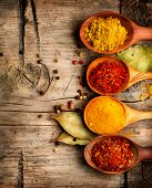 picture of spice  - Spices - JPG