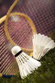 foto of shuttlecock  - Badminton shuttlecock - JPG