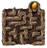 pic of bird-nest  - Retirement savings strategy nest egg symbol as a financial planning business concept with a bird nest shaped as a maze or labyrinth with a golden egg as the prize on a white background - JPG