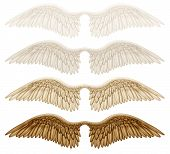 picture of cherubim  - Digital illustration of wings - JPG
