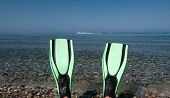 image of fin  - Looking at a blue sea and water skiers past a pair of fins  - JPG