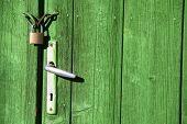 pic of wooden door  - Color shot of a vintage door handle and a lock on a wooden green door - JPG