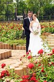stock photo of married  - A married couple bride and groom about to kiss in sunshine on a beautiful waterfront city - JPG
