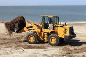 image of azov  - Tractor cleans the beach after the storm - JPG