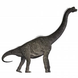 picture of herbivore  - Brachiosaurus was a herbivorous dinosaur that lived in the Jurassic Era of North America - JPG
