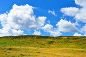 image of blacktail  - Blacktail Plateau in Yellowstone National Park Wyoming in summer - JPG