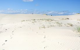 foto of mile  - Miles and Miles of sand dunes to traverse at Dark Point to reach the ocean - JPG