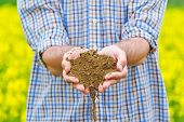 pic of farm land  - Male Farmer Examines Soil Quality on Fertile Oilseed Rapeseed Agricultural Farm Land - JPG