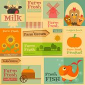 stock photo of farm animals  - Farm - JPG