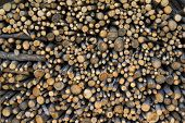 picture of firewood  - stacked rows of firewood in a small countryside korean house in Ganenung South Korea - JPG