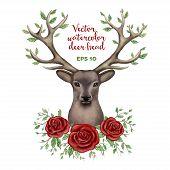 picture of deer head  - Vector watercolor illustration of deer head with roses frame - JPG
