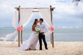 stock photo of wedding  - young loving couple on their wedding day beautiful wedding arch on beach outdoor beach wedding in tropics - JPG