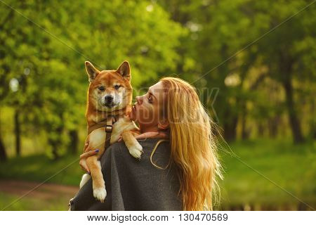 poster of Girl and dog Shiba Inu embrace in a spring park. Walking with a pet. Pedigree dog. Walking dogs. Dog happiness.
