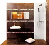 pic of lavabo  - Interior shot of brown bathroom with shower - JPG