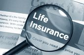 stock photo of insurance-policy  - Life insurance concept with leaflets and magnifying glass in monochrome - JPG