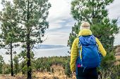 Hiking Woman With Backpack Looking At Inspirational Mountains Landscape And Woods. Fitness Travel An poster