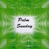 Illustration Of Palm Sunday Text On Palm Leaves Background On The Occasion Of Christian Moveable Fea poster