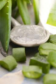 image of aloe-vera  - aloe vera juice with fresh leaves - JPG