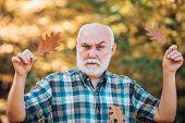 Happy Senior Man Looking At Camera. Senior Man Walking In The Park In Autumn. Senior Man Strolling I poster