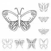 Vector Design Of Fly And Decorative Sign. Set Of Fly And Insect Vector Icon For Stock. poster