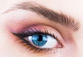 Woman Eyes With Beautiful Makeup. Closeup Eyebrow And Blue Eye. Woman With Soft Smooth Healthy Skin  poster
