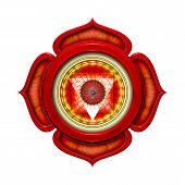 image of tantra  - Illustration of the seven main chakras - JPG