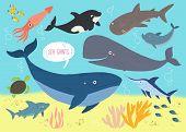 Underwater Background With Ocena Giants. Whale, Shark, Squid, Swordfish, Dolphin, Ocean Turtle, Shar poster