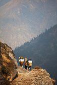 image of sherpa  - Trekking in Sagarmatha region - JPG