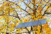 picture of solar battery  - outdoor solar battery panel and tree in autumn day
