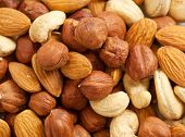 foto of brazil nut  - Background from various kinds of nuts  - JPG