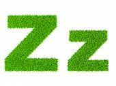 Grass letter Z - ecology eco friendly concept character type
