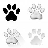 image of animal footprint  - Set of icons with animal footprints on white background - JPG