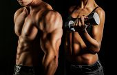 picture of arm muscle  - Bodybuilding - JPG